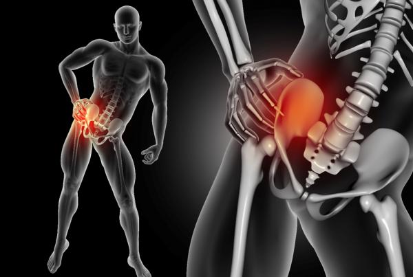 ortopedico anca